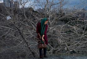 At the Sackler Gallery, a rarely seen view of Iran by six women photographers