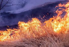 ۱۰۰ هکتار از مراتع و جنگلهای شمال دزفول در آتش سوخت