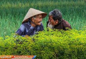 تصاویر | ثبت عشق از نگاه دوربین
