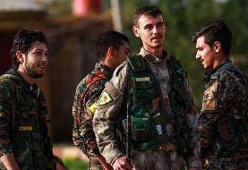 Iran slams US 'provocative, worrisome' move on Syria safe zone