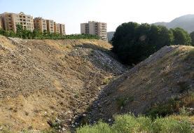 ۵۲۵ برج باغهای تهران را بلعیدند