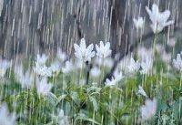 وقوع بارشهای رگباری همراه با وزش باد شدید در برخی نقاط کشور