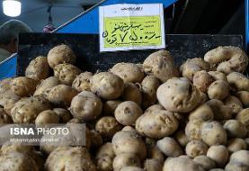سیبزمینی صدرنشین افزایش قیمت در خرداد ماه امسال