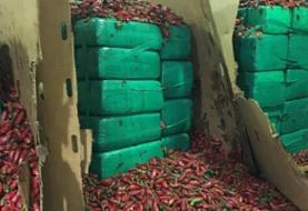 Customs agents found nearly 4 tons of marijuana hidden in a shipment of jalapeños trying to ...
