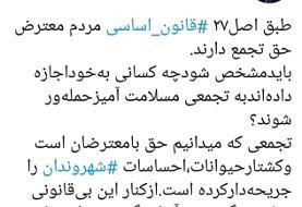 اعتراض عضو شورای شهر تهران به برخورد با تجمع ضدسگ کشی/ تجمع براساس اصل ۲۷ قانون اساسی آزاد است