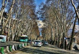 یک طرفه شدن خیابان ولیعصر و شریعتی/ ایجاد مونوریل در ولنجک