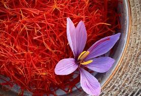 Iran saffron exports down due to smuggling, government restrictions: Exporter