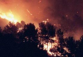 «قاضی خان» غرق در آتش؛ جنگلهای ایلام یاور ندارد
