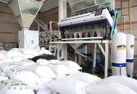 مرکز بینالمللی تجارت و صادرات برنج ایران افتتاح شد