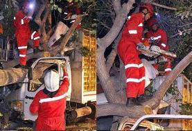 نجات معجزه آسای راننده کامیونت از بین خودرو و درخت