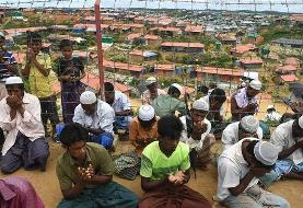 Rohingya 'would rather drink poison ' than return to Myanmar