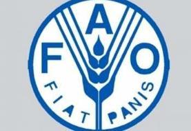 انتخاب لرستان به عنوان پایلوت دفتر فائو در کشور