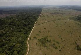 Fires in the Amazon could be part of a doomsday scenario that sees the rainforest spewing carbon ...