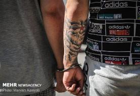 خرده فروشان مولوی با انواع مواد مخدر و مشروبات الکلی دستگیر شدند