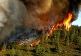 جنگل ارسباران: ۳۰۰ هکتار در آتش سوخت