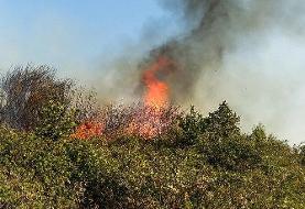 آتش سوزی در جنگل های ارسباران / عکس