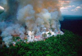 آمازون در آتش | رهبران برزیل و فرانسه در جنگ