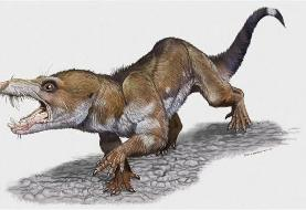 Paleontologists find a mammal similar to squirrel in