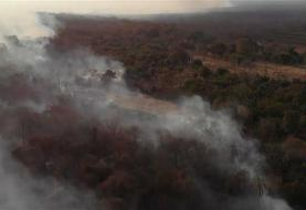 France, UN urge Brazil to protect fire-plagued Amazon