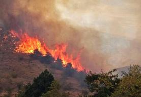 (تصاویر) آتشسوزی در جنگلهای ارسباران