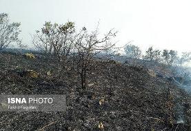 تصاویر آتشسوزی در جنگلهای ارسباران