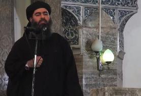 البغدادی فرماندهی داعش را به عبدالله قرداش «واگذار کرد»