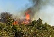 آتشسوزی در جنگلهای ارسباران