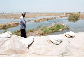 کشاورزان خوزستانی در صف دریافت خسارت سیل