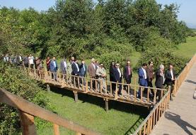افتتاح پل چوبی تالاب تالش (+عکس)