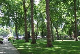 لزوم لحاظ بستر حقوقی در ارزیابی راهبردی زیست محیطی تهران