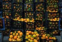 میادین میوه و تره بار روز عید غدیر فعال هستند