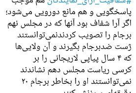 کنایه محمود صادقی به مدافعان شفافیت آرای نمایندگان/ اگر آرا شفاف بود نمیتوانستید ژست ضدبرجام بگیرید