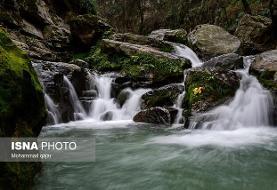 انتقاد از بیتوجهی وزارت نیرو به آبشارها