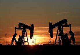 OPEC Defers Decision on Oil Output Reduction
