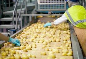 افزایش ارزش افزوده محصولات کشاورزی در همدان