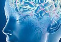 ۲۵ درصد از بار بیماری ها در دنیا مربوط به اعصاب است