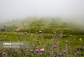 افت ۱۰ درجهای دما در اردبیل و خراسان شمالی