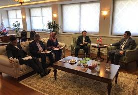 محمود واعظی با وزیر انرژی ترکیه دیدار کرد +عکس