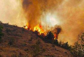 بازداشت ۳ نفر در ارتباط با آتش سوزی جنگلهای ارسباران