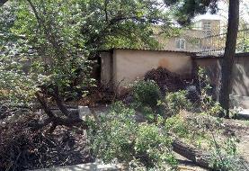 آخرین خبر از وضعیت «خانه نیما یوشیج»