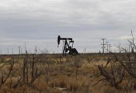 سقوط قیمت نفت درپی اعلام احیای تولید عربستان
