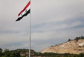 پسر عموی همسر بشار اسد آزاد شد