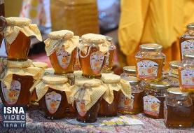 ویدئو / نخستین جشنواره و نمایشگاه بینالمللی عسل در ارومیه