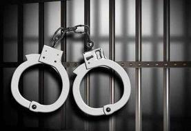 بازداشت عوامل بریدن گوش الاغ در بهشهر