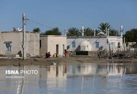بسیج امکانات صندوق بیمه کشاورزان در استانهای جنوبی برای کمک به سیلزدگان
