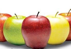 طبع میوه سیب را در دانشنامه میزان بشناسید!