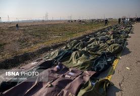 جانباختگان سانحه هواپیمای اوکراینی در حکم شهید محسوب میشوند