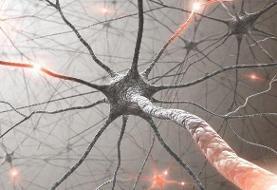 تأثیر امواج آنتن های مخابراتی بر سرطان ثابت نشده است