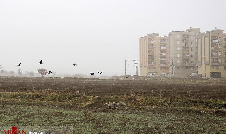 آلودهترین شهر ایران کجاست؟ در ۱۰ ماه گذشته هیچ روز پاکی برای این شهر ثبت نشده است!