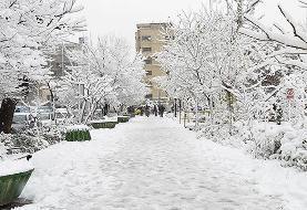 عکس/ حال و هوای برفی تهران